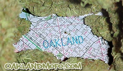oakland weed pot marijuana dispensary
