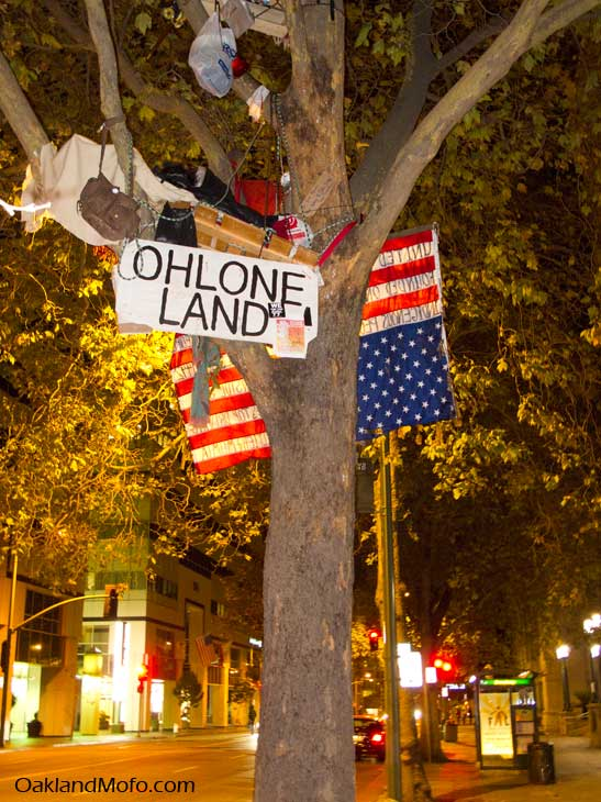 running wold occupyoakland tree sitter